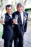 Провозглашать брак гомосексуалистов Стоковое фото RF