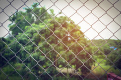 Проволочные изгороди Стоковые Фотографии RF
