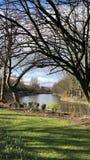 Прогулка весны в парке рекой Стоковое Изображение RF