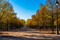Прогулка в садах Tuilerie Стоковая Фотография