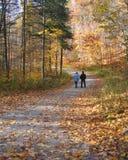 прогулка в сентябре Стоковое Изображение