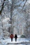 Прогулка зимы в пути леса Фонтенбло стоковые изображения rf