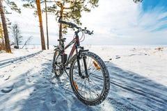 Прогулка зимы на велосипеде Западное Сибирь Стоковые Фотографии RF