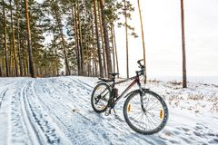 Прогулка зимы на велосипеде Западное Сибирь Стоковое фото RF