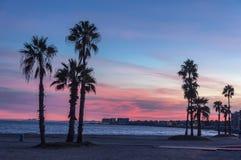 Прогулка и пляж вечера Torrevieja стоковые изображения rf