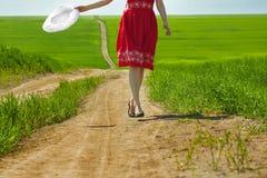 прогулка лета Стоковое Изображение