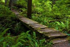 прогулка моста старая Стоковое Фото