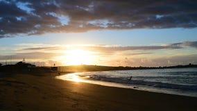 Прогулка на пляже сток-видео