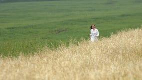 Прогулка на пшеничном поле акции видеоматериалы