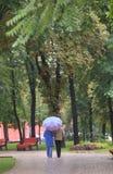 прогулка парка осени Стоковое Фото