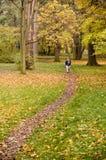 прогулка парка Стоковые Изображения