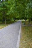 прогулка парка Стоковое Изображение