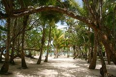 прогулка пляжа Стоковое Изображение