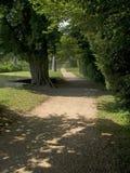 Прогулка полесья Стоковая Фотография RF