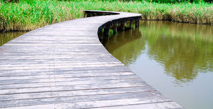 прогулка потока Стоковое фото RF