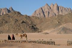 прогулка пустыни Стоковое Изображение RF