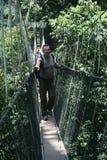 прогулка сени Стоковые Фотографии RF