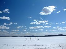 прогулка соли Стоковые Фото