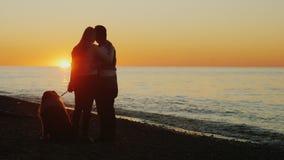 Прогулка с вашей любимой собакой Молодая пара любяща видимости солнца над морем, рядом с их любимчиком видеоматериал