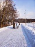 Прогулка с pram на матерях солнечных wYoung с прогулочными колясками идет в парк Стоковые Фотографии RF