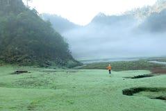 прогулка тумана злаковика womnan стоковое изображение rf