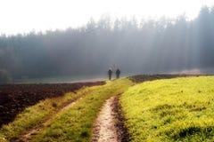 прогулка хода тумана осени стоковая фотография rf