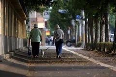 прогулка Стоковая Фотография RF