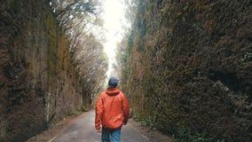 Прогулки и скачки молодого оптимистического человека туристские между утесами дорогой в природном парке Anaga в Тенерифе Движения видеоматериал