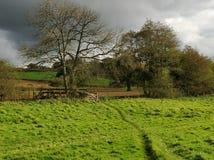 Прогулки сельской местности осени Стоковые Изображения
