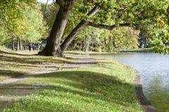 Прогулочные коляски наслаждаясь прогулкой вдоль озера верб Стоковые Фотографии RF