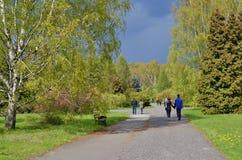 Прогулка весны перед штормом Стоковое Фото