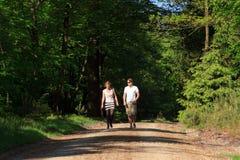 Прогулка весны Стоковое Фото