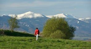 Прогулка весны Стоковая Фотография RF
