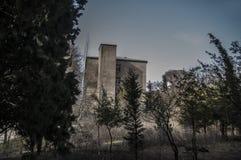 Прогулка в красивом парке города Парк Баку ботанический на времени весны зеленые валы Стоковое Изображение