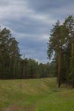 Прогулка вдоль железной дороги Стоковая Фотография