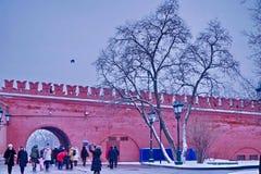 Прогулка в парке в зиме Стоковое Изображение RF
