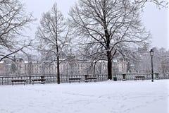 Прогулка в снеге Стоковые Изображения RF