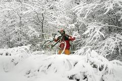 Прогулка в снежностяхbicycleСтоковые Фотографии RF