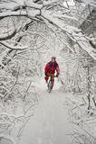 Прогулка в снежностяхbicycleСтоковое фото RF