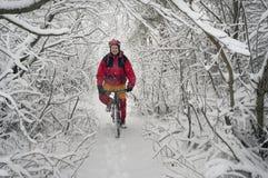 Прогулка в снежностяхbicycleСтоковые Фото