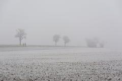 Прогулка в тумане зимы Стоковые Фото