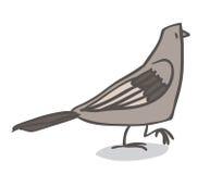 Прогулка голубя иллюстрация вектора