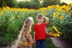 Прогулка детей около поля солнцецветов Концепция children& x27; приятельство s Стоковое Фото