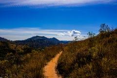 Прогулка к раю Стоковое Изображение