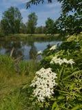 Прогулка на озере Стоковая Фотография RF