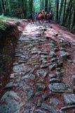 Прогулка на пути богов Стоковое Изображение RF