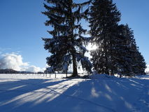 Прогулка на Wackersberg Стоковое Фото