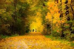 Прогулка осени Стоковая Фотография