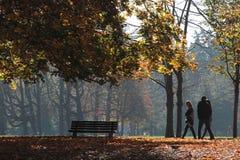 прогулка парка осени Стоковые Изображения