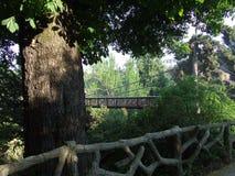 прогулка парка Стоковое Фото
